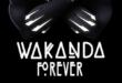 Arti Wakanda Forever