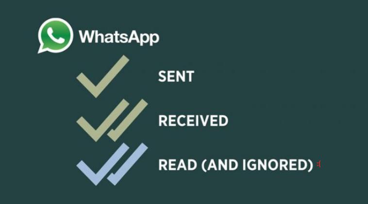 Centang 1 Whatsapp / WA